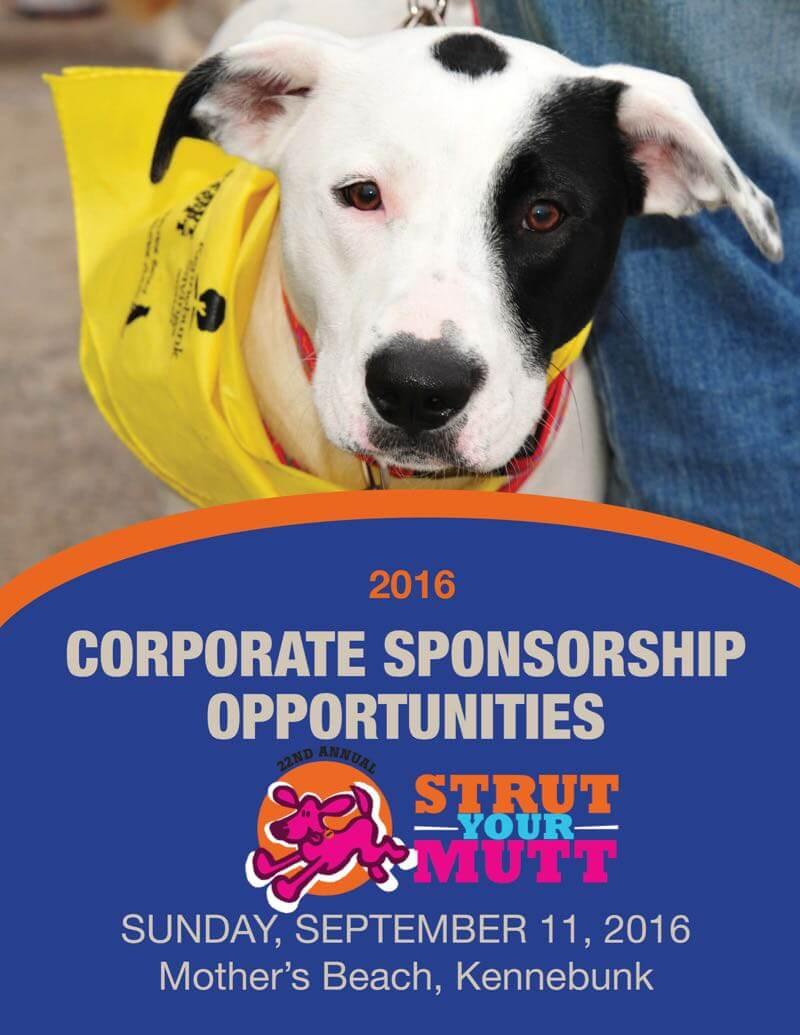 Strut Corp. Sponsorship
