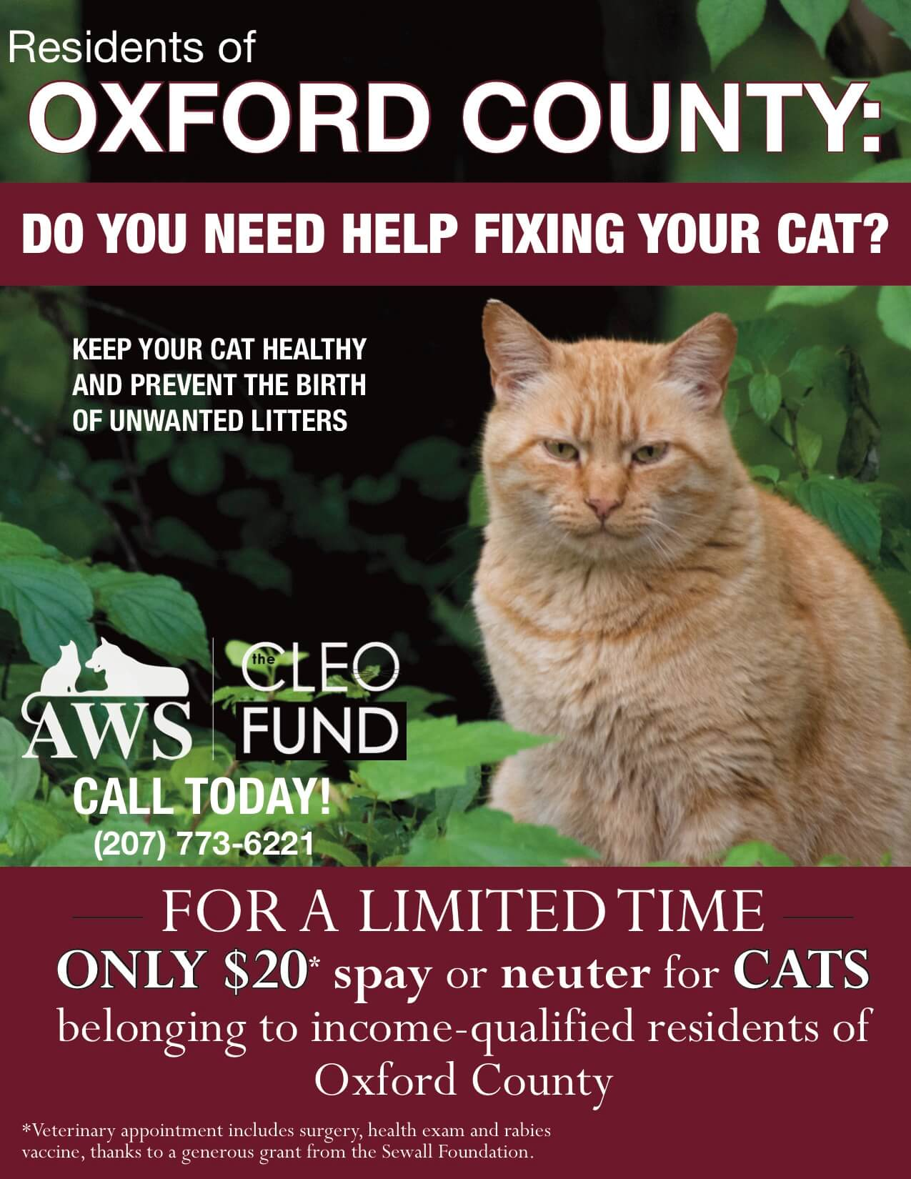 SPAY NEUTER 8 ½ by 11 POSTER Oxford County